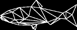 wireframe-alose